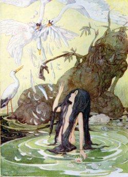 Hans Christian Andersen The Little Mermaid Original Book Hans Christian Andersen Fairy